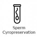Sperm-Cyropreservation